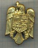 Y 1541 INSIGNA-MILITARA  -EMBLEMA COIFURA -PENTRU COLECTIONARI