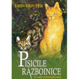 Pisici Razboinice 5 - O cale primejdioasa - Hunter Erin