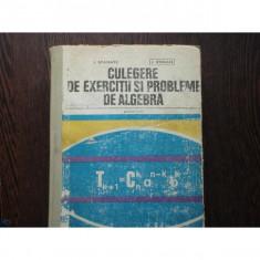 CULEGERE DE EXERCITII SI PROBLEME DE ALGEBRA - I.STAMATE