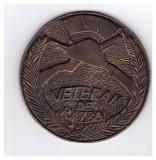 Medalia/placheta Veteran de razboi - 10 ani Asociatia Nationala a Veteranilor