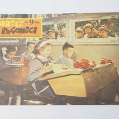 Revista Arici Pogonici Nr. 9 1976