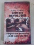Crimele revolutiei , Sangeroasa diversiune a KGB-istilor din FSN - G. CARTIANU