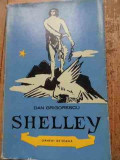 Shelley - Dan Grigorescu ,528062