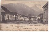 #Z.2286- Romania, Zarnesti salutari, carte postala circulata 1905: Strada mare