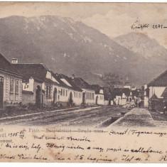#Z.2286- Romania, Zarnesti salutari, carte postala circulata 1905: Strada mare, Fotografie
