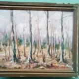 Pictura toamna - semnat R. Schweitzer Cumpana, Peisaje, Ulei, Impresionism