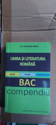 LIMBA SI LITERATURA ROMANA PROZA POEZIE DRAMATURGIE BAC COMPENDIU BADEA foto