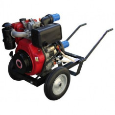 Motopompa de irigat Gardelina cu Motor Anadolu DWP 186 K(S)
