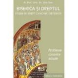 Biserica si dreptul. Studii de drept canonic ortodox, vol. 5. Probleme canonice actuale - Liviu Stan