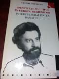 IDENTITATI MULTIPLE IN EUROPA REGIUNILOR   Victor Neumann