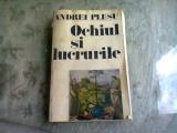 OCHIUL SI LUCRURILE - ANDREI PLESU