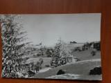 Peisaj de iarna pe Muntele Semenic - circulata 1971, Necirculata, Fotografie