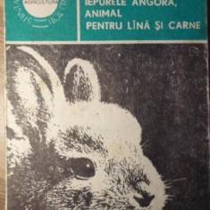 IEPURELE ANGORA, ANIMAL PENTRU LANA SI CARNE - LIVIU ST. REBREANU