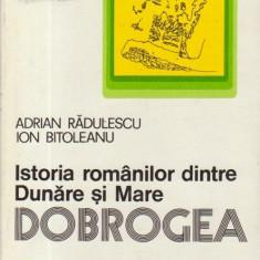 Istoria romanilor dintre Dunare si Mare - Dobrogea
