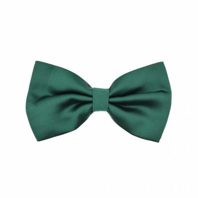 Papion verde clasic Bernardin foto