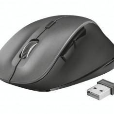 Mouse wireless Trust Ravan