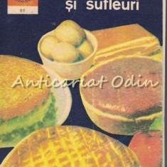 Budinci Si Sufleuri - Elena Rusu