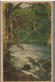 CPI B 12261 CARTE POSTALA - VALEA OLTULUI. VEDERE SPRE CALIMANESTI, 1955