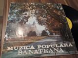 Cumpara ieftin VINIL MUZICA POPULARA BANATEANA EPE 0284