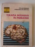 Terapia intensiva in psihiatrie - Stelian Randasu si Sebastian Liviu Bratucu