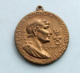Medalie  -  IN AMINTIREA  INCORONARII  FERDINAND  I  REGE AL  ROMANILOR  1921