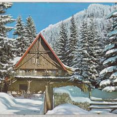 Bnk cp Poiana Brasov - Coliba Haiducilor - uzata, Necirculata, Printata