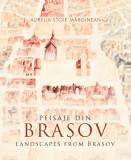 Peisaje din Brasov | Aurelia Stoie Marginean