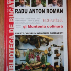 BANATUL SI MUNTENIA COLINARA, RADU ANTON ROMAN