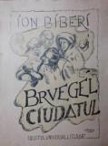 BRUEGEL CIUDATUL - ION BIBERI
