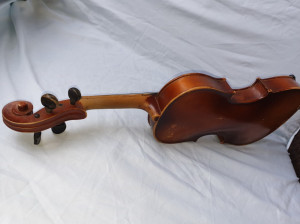 Vioara reghin an 1955