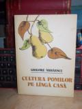 GRIGORE MIHAESCU - CULTURA POMILOR PE LANGA CASA ( ALTOIREA ) , 1982