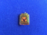 INSIGNA PIONIER - SOIMII PATRIEI (fond verde inchis)