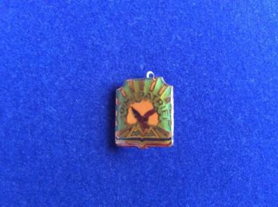 INSIGNA PIONIER - SOIMII PATRIEI (fond verde inchis) foto