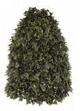Aranjament artificial frunze iedera verde Ivy 60 h Elegant DecoLux, Bizzotto