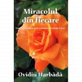 Miracolul din fiecare Vindecari posibile prin cunoasterea credintei si post, Ovidiu Harbada