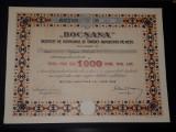 Actie 1928 Bocsana - titlu - Actiuni - actia - Bocsa montana - Rara - banca