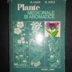 A. LAZA - PLANTE MEDICINALE SI AROMATICE