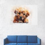 Tablou Canvas, Portret Caine Samoyed - 40 x 60 cm