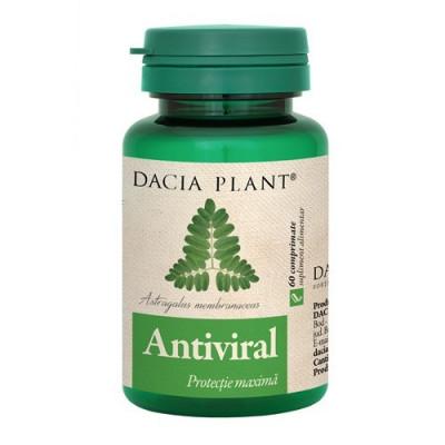 Antiviral, 60cps, Dacia Plant foto