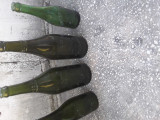 Sticle bere vechi Luther si Bragadiru