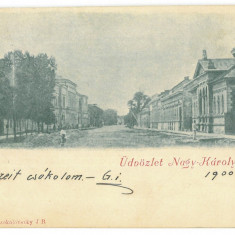 4815 - CAREI, Satu-Mare, Litho, Romania - old postcard - used - 1900