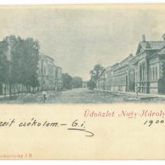 4815 - CAREI, Satu-Mare, Litho, Romania - old postcard - used - 1900