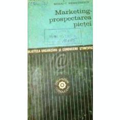 Marketing - prospectarea pietei