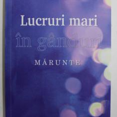 LUCRURI MARI IN GANDURI MARUNTE de ION IRIMIE , 2016