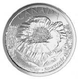 Canada 25 cent 2015 UNC Mac de Camp - Primul Razboi Mondial, America de Nord