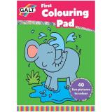 Early Activities: Prima carte de colorat PlayLearn Toys, Galt