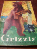 GRIZZLY STAPINUL MUNTILOR
