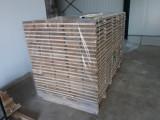 Parteneriat (joint venture) stejar