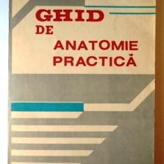 Ghid de anatomie practica - colectiv