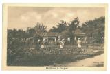 2472 - FOCSANI, Garden, Romania - old postcard - unused, Necirculata, Printata